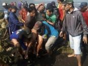 Tim SAR dan warga melakukan evakuasi terhadap korban selamat karamnya perahu nelayan Joko Berek di perairan Plawangan Puger, Jember - foto: Istimewa