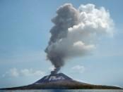 Gunung Anak Krakatau muncul dari permukaan laut di tahun 1927. Rata-rata tambah tinggi 4-6 meter per tahun - foto: Istimewa