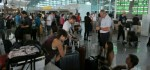 Pascagempa Lombok, Aktivitas di Bandara Ngurah Rai Tetap Normal