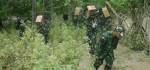 Medan Ekstrim Ditembus TNI untuk Salurkan Logistik Korban Gempa
