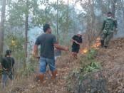 Tim gabungan yang terdiri dari TNI, Polri, BPBD dan warga berjibaku memadamkan  api yang masih terlihat di sejumlah titik di lereng Gunung Batur - foto: Istimewa