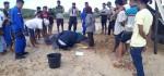 Nelayan Siodema Rote, Kembalikan Penyu Belimbing Seberat 100 Kg