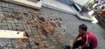 Sejumlah Bangunan di Badung Rusak Terdampak Gempa Nusa Dua