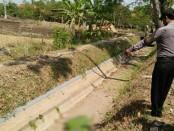 Kondisi mayat perempuan tanpa identitas, yang ditemukan di saluran irigasi di Desa/Kecamatan Sruweng, Kebumen, Sabtu (14/9) pagi - foto: Sujono/Koranjuri.com