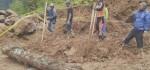 Perusakan Hutan Lawu, Kusuma: Tindak Tegas Seluruh Oknum yang Terlibat
