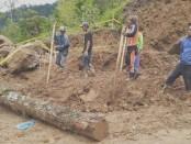Kayu dan lahan yang rusak akibat dampak pembangunan dengan alat berat - foto: Istimewa