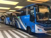 Armada bus yang disiapkan untuk penjemputan pekerja migran asal Bali yang tiba di Bandara Ngurah Rai pada Minggu (22/3/2020) - foto: Istimewa