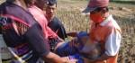 Tertelungkup di Saluran Irigasi, Pria 63 Tahun Ditemukan Tak Bernyawa