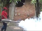 Aktivitas fogging yang dilakukan oleh petugas dari Dinas Kesehatan Kabupaten Gianyar di Kecamatan Sukawati beberapa waktu lalu - foto: Catur/Koranjuri.com
