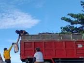 Trash Hero Indonesia saat melakukan aksi bersih sampah plastik di masa pandemi di Pantai Keramas, Blahbatuh, Gianyar, Jumat (22/5/2020) pagi - foto: Catur/Koranjuri.com