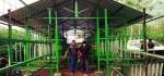 KOIN Targetkan 10 Ribu Kandang Domba untuk Program 'Ngingu Bareng'