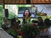 Pelaksanaan verifikasi dan validasi nominator Penghargaan Kalpataru 2020 yang dilakukan melalui video conference, Selasa (9/6/2020) kemarin siang di Aula Puri Damai Banjar Tunon Singakerta, Ubud - foto: Catur/Koranjuri.com