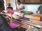 Aktivitas menenun yang dilakukan oleh sekelompok penenun di Banjar Pesalakan, Desa Pejeng Kangin, Tampaksiring Gianyar, Jumat (26/6/2020) - foto: Catur/Koranjuri.com
