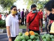 Terapkan Protokol kesehatan, Ketua TP PKK Provinsi Bali Putri Suastini Koster memantau kegiatan 'Gelar Pangan Murah depan Kantor Gubernur Bali di Denpasar, Jumat (17/7/2020) - foto: Istimewa