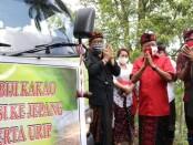 Gubernur Bali Wayan Koster didampingi Wagub Tjokorda Oka Artha Ardhana Sukawati melepas ekspor Kakao Fermentasi di Desa Poh Santen, Jembrana, Kamis, 20 Agustus 2020 - foto: Istimewa