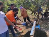 Proses evakuasi mayat dalam sumur, Sabtu (19/09/2020), di Kantor UPT Pertanian Bener - foto: Sujono/Koranjuri.com