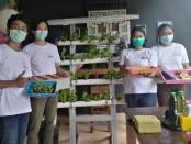 Coca-Cola Amatil Indonesia (CCAI) Balinusa Operation mengadakan kegiatan komunitas melalui Media Gathering dan sekaligus pelatihan dalam sesi Workshop Hidroponik pada Rabu, 25 November 2020 - foto: Koranjuri.com