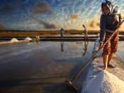 Petani garam - foto: Koranjuri.com
