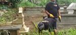 Ini Dia,  Relawan Bersih Bersih Kuburan Yang  Siap Tebang Pohon Angker