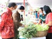 Gubernur Bali Wayan Koster dan Ketua TP PKK Bali meninjau pasar murah menyambut hari Galungan dan Kuningan, Selasa, 6 April 2021 - foto: Istimewa