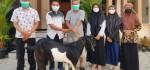 Hari Raya Idul Adha, SMK Kesehatan Purworejo Bagi-bagi Kambing