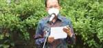 Total Bansos yang Disalurkan Pemprov Bali Senilai Rp 449 Milyar